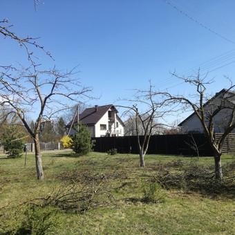 Aplinkos tvarkymas, genėjimas, vejos pjovimas, gyvatvorių ki / Paulius Mikelinskas / Darbų pavyzdys ID 649949