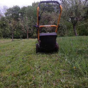 Aplinkos tvarkymas, genėjimas, vejos pjovimas, gyvatvorių ki / Paulius Mikelinskas / Darbų pavyzdys ID 653749