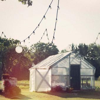 Lempučių girliandų nuoma vestuvėms ir kt. šventėms. / Ponas Edisonas / Darbų pavyzdys ID 85949