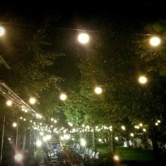 Planavimas, lempučių, tekstilės nuoma, šampano staliukai / Smagilė / Darbų pavyzdys ID 658065