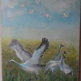 Parduodu tapytus savo paveikslus / Vilija Brazdeikienė / Darbų pavyzdys ID 658107