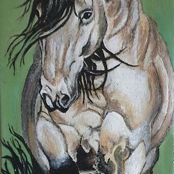 Parduodu tapytus savo paveikslus / Vilija Brazdeikienė / Darbų pavyzdys ID 658155