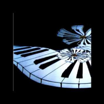 Pianisto paslaugos / Tomas Viskontas / Darbų pavyzdys ID 659513