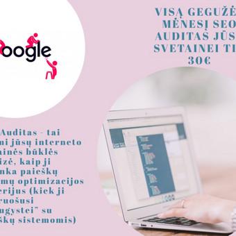 SEO paslaugos už konkurencingą atlygį / Edita Šlakaitienė / Darbų pavyzdys ID 661425