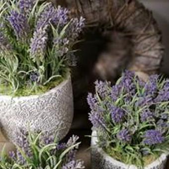 a.DoNa gėlės | floristikos studija / a.DoNa gėlės | floristikos studija / Darbų pavyzdys ID 664121