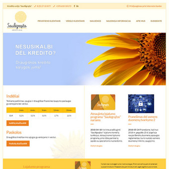 Interneto svetainių ir el.parduotuvių kūrimas, TVS, SEO / UAB TVS projektai / Darbų pavyzdys ID 667829