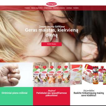 Interneto svetainių ir el.parduotuvių kūrimas, TVS, SEO / UAB TVS projektai / Darbų pavyzdys ID 667831