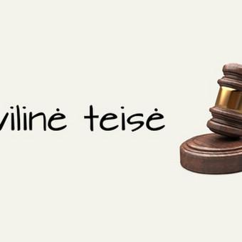 Teisininkė Neringa Vaišvilaitė / Teisininkė Neringa Vaišvilaitė / Darbų pavyzdys ID 670009