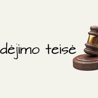 Teisininkė Neringa Vaišvilaitė / Teisininkė Neringa Vaišvilaitė / Darbų pavyzdys ID 670011