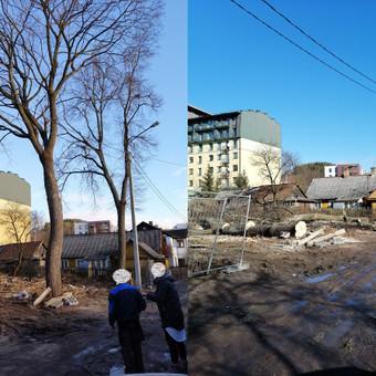 Medkirtys Vilniaus rajone / Raimundas / Darbų pavyzdys ID 674929