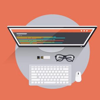 Web Development * Internetinių svetainių kūrimas / Karolis M / Darbų pavyzdys ID 678827