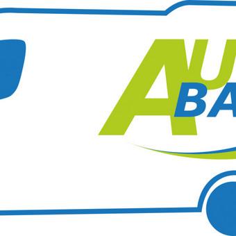 Keleiviu vezimas,autobusu ir mikroautobusu nuoma LT IR EU / Vežame Keleivius / Darbų pavyzdys ID 89253