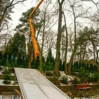 Profesionalus aplinkos darbai, medžių pjovimas,genejimas / Arnas Kazakevičius / Darbų pavyzdys ID 707335