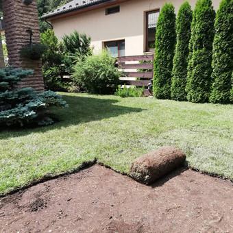 Apželdinimas, vejos įrengimas ir priežiūra / UAB Želdina / Darbų pavyzdys ID 715601