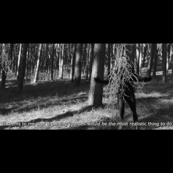 Filmukų montavimas Jūsų progai! / Dainora Petrauskaitė / Darbų pavyzdys ID 718243
