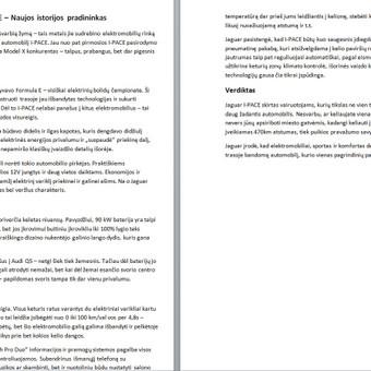 Copywriting paslaugos (LT/EN) / Evaldas Zabitis / Darbų pavyzdys ID 723233