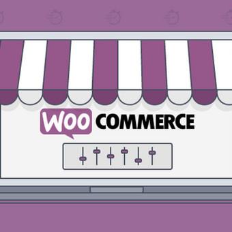 El. parduotuvių kūrimas - Efektyviam pardavimų generavimui / Kipras Bielinskas / Darbų pavyzdys ID 731381