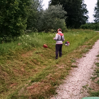 Atliekame vejos pjovimo, įrengimo darbus / Marius / Darbų pavyzdys ID 93321