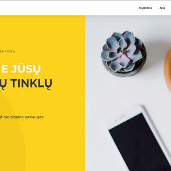 300 eurų kainuojančios internetinės svetainės pavyzdys