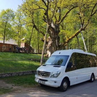 Autobusų ir mikroautobusų nuoma / Keleivių vežimas / Darbų pavyzdys ID 753973