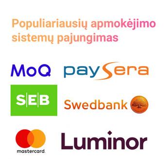 Įdiegiame į elektronines parduotuves populiariausias apmokėjimo ir siuntų pristatymo sistemas.