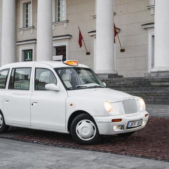 Automobilių nuoma / Tomas Miliauskas / Darbų pavyzdys ID 95691