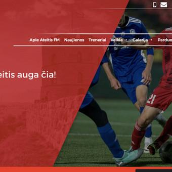 Svetainių kūrimas, web aplikacijų kūrimas / Vaidas Jokubauskas / Darbų pavyzdys ID 783795