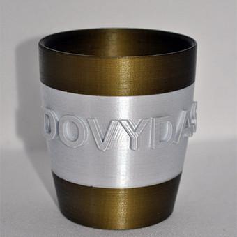 3D spausdinimas / Pramanas / Darbų pavyzdys ID 805855