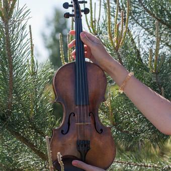 Smuiko melodijos Jūsų šventei / Muzikantai / Darbų pavyzdys ID 824657
