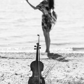 Smuiko melodijos Jūsų šventei / Muzikantai / Darbų pavyzdys ID 824663