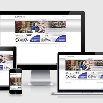 Interneto svetainių kūrimas    El. parduotuvių kūrimas / E-svetainė  Andrius / Darbų pavyzdys ID 827989