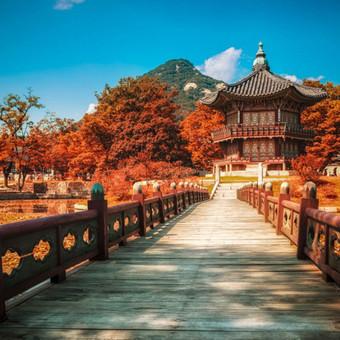 Pietų Korėja, Japonija, budistų vienuolynai su grupe iš Lietuvos