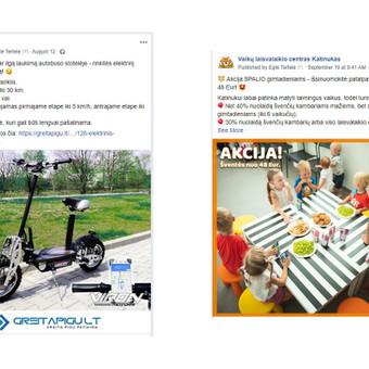 Pardavimų didinimas internetinės rinkodaros kanalais / Eglė Tertelė / Darbų pavyzdys ID 830941
