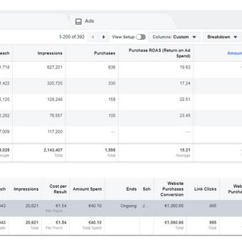 Pardavimų didinimas internetinės reklamos pagalba / Eglė Tertelė / Darbų pavyzdys ID 830953
