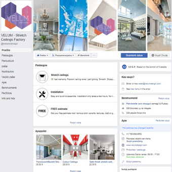 Pardavimų didinimas internetinės reklamos pagalba / Eglė Tertelė / Darbų pavyzdys ID 831877