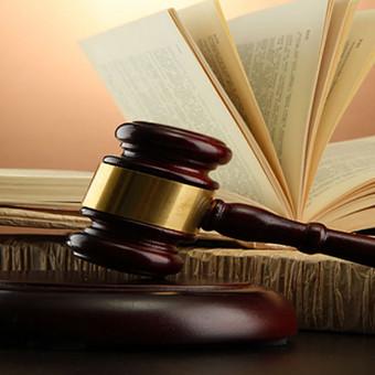 Kvalifikuotos profesionalių advokatų - teisininkų paslaugos / Karolina Jonaitienė / Darbų pavyzdys ID 841159