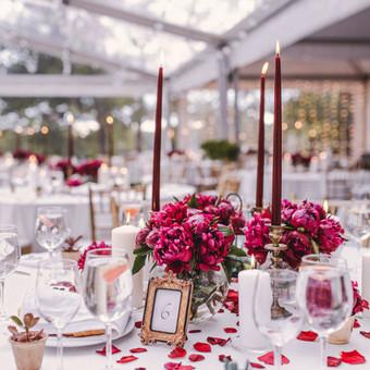 Vestuvių ir renginių planavimas  ir organizavimas / Tomas / Darbų pavyzdys ID 844735