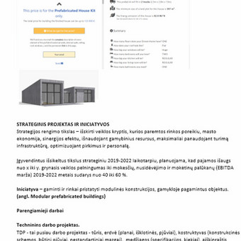 Verslo analitika / Strategija / Rinkodara / Marketingas / Kęstutis Vileikis / Darbų pavyzdys ID 854181