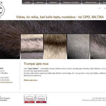 Interneto svetainių kūrimas    El. parduotuvių kūrimas / E-svetainė  Andrius / Darbų pavyzdys ID 861077