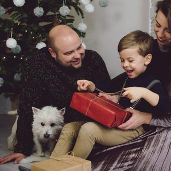 Kviečiu registruotis Kalėdinėms fotosesijoms studijoje :) / Sandra / Darbų pavyzdys ID 882903