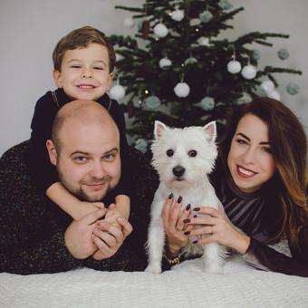 Kviečiu registruotis Kalėdinėms fotosesijoms studijoje :) / Sandra / Darbų pavyzdys ID 882911