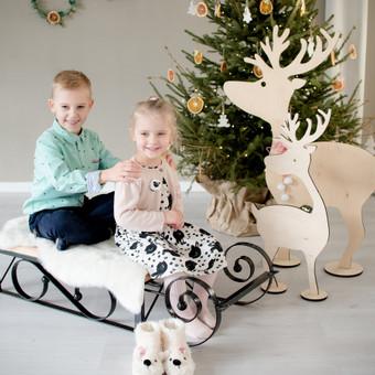 Kviečiu registruotis Kalėdinėms fotosesijoms studijoje :) / Sandra / Darbų pavyzdys ID 882915