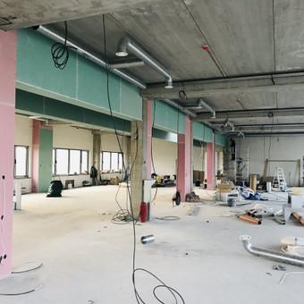 Apdailos ir montavimo darbai (Kaunas) / RKline - Construction / Darbų pavyzdys ID 897153