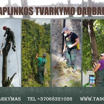 Aplinkos tvarkymas! / Tadeušas / Darbų pavyzdys ID 944055