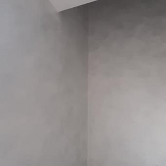 Apdailos darbai Panevėžyje / Darius / Darbų pavyzdys ID 946615