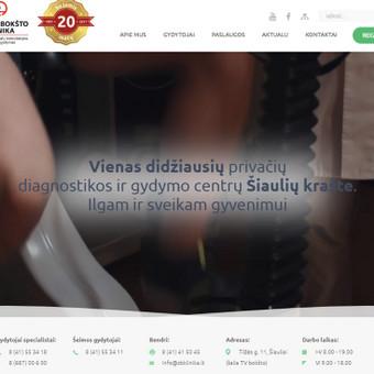Laisvai samdomas e-komercijos projektų vadovas / Emilis Markulis / Darbų pavyzdys ID 950455