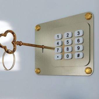 Saugos ir kontrolės sistemos / Rūta / Darbų pavyzdys ID 981463