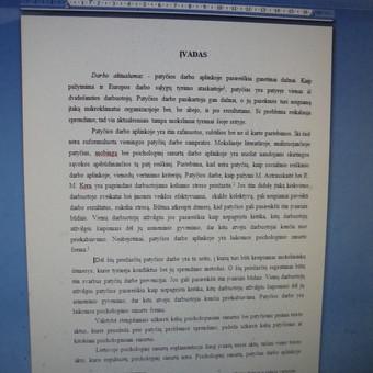 Studentų konsultavimas rengiant rašto darbus / Dana / Darbų pavyzdys ID 988433