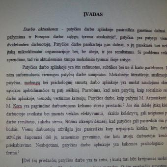Studentų konsultavimas rengiant rašto darbus / Dana / Darbų pavyzdys ID 988435