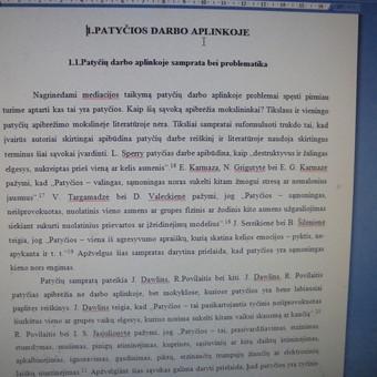 Studentų konsultavimas rengiant rašto darbus / Dana / Darbų pavyzdys ID 988437